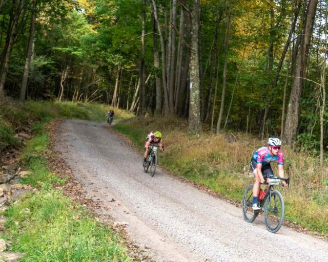 2019 quick and the dead race report