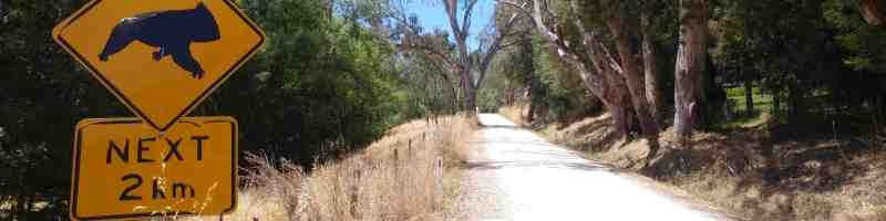 cudlee creek bushfires gravel cycling in australia