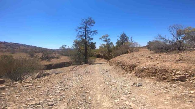 gravel cycling in the australian outback flinders ranges