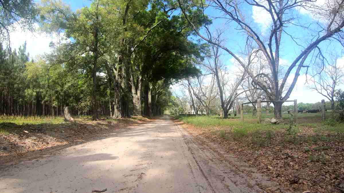 long gravel bike rides in north florida